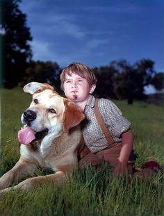 "One of Kevin Corcoran's best roles in a Disney film was as little brother Arliss in the 1957 movie ""Old Yeller. Walt Disney Cartoons, Disney Movies, Old Yeller, Large Dog Breeds, The Good Old Days, Gods Love, Kids Playing, How To Memorize Things, The Past"