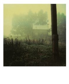Polaroid by Andrei Tarkovsky from the book Instant Light: Tarkovsky Polaroids from Thames and Hudson. Creepy, Polaroid Pictures, Film Stills, Oeuvre D'art, Film Photography, Les Oeuvres, Filmmaking, Illustrations, Instagram