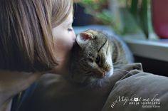 Mój kot ma dom - Akcja społeczna: V.006