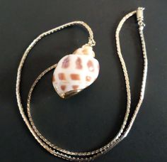 Stunning Vintage Gold Plate Linked Chain and Real Shell Slide Pendant Necklace. by Bestintreasures on Etsy