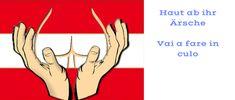 Gegen wen kämpfen die 5 Sterne für Österreich und für wen treten sie ein?