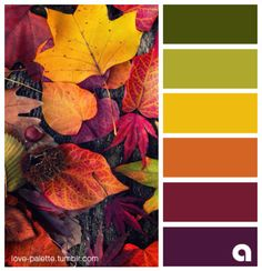 Burgundy and Purples bold outlines Fall Color Schemes, Color Schemes Colour Palettes, Fall Color Palette, Colour Pallette, Color Combos, Fall Paint Colors, Vintage Colour Palette, Orange Color Palettes, Color Balance