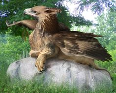 Griffin  is a legendary creature with the body, tail, and back legs of a lion; the head and wings of an eagle; and an eagle's talons as its front feet. Because the lion was traditionally considered the king of the beasts and the eagle the king of birds, the griffin was thought to be an especially powerful and majestic creature.