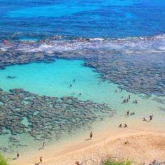 Hanauma Bay Snorkeling Tours to Hawaii's Best Reef on Oahu Hanauma Bay, Best Snorkeling, Round Trip, Oahu Hawaii, Lifeguard, Oceans, Tours, Beach, Water