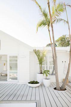 Three Birds Renovations - Bonnie's Dream Home - Outdoor Living - Palm Trees