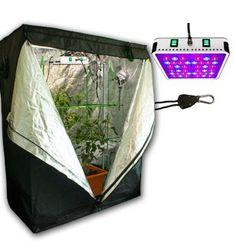 ColoGrow365 Homegrown Indoor Grow Kit, LED Grow Tent Kit ... http://amzn.to/1qTxKAe