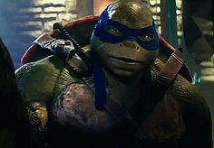 """You got yourself one badass dudette, leo! ""thanks, Mike. I know I… Fanfiction Teenage Mutant Ninja Turtles, Ninja Turtles 2014, Baby Turtles, Tortugas Ninja Leonardo, Ninja Wallpaper, Aching Legs, Tmnt Leo, Leonardo Tmnt, Turtle Love"