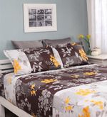 Buy Raymond Home Multicolour Cotton Queen Silverleaf Bed sheet with 2 Pillow Covers  Online: Shop from wide range of Bed