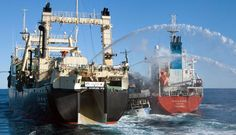 whale wars photos   Whale Wars: Japanese whalers, protesters clash at sea