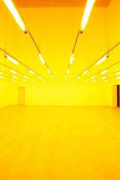 Olafur Eliasson, Room for one colour, 1997