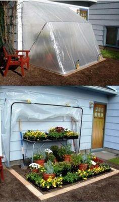 Wonderful greenhouse!