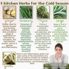 Healthy Blender Recipes - the weather has turned cold and cold and flu season is. Flu Remedies, Herbal Remedies, Natural Remedies, Health Remedies, Natural Herbs, Natural Healing, Holistic Healing, Natural Earth, Healthy Blender Recipes