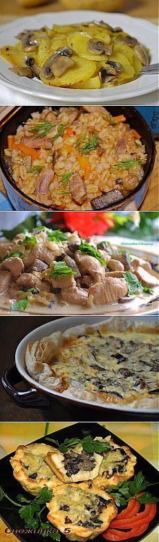 10 SUPER rețetă de gătit ciuperci