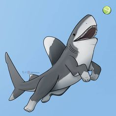 Top 30 baby shark cute desktop background, wallpaper, images for PC laptop, mobile and tablet. Weird Creatures, Fantasy Creatures, Mythical Creatures, Animal Sketches, Animal Drawings, Amazing Drawings, Cute Drawings, Shark Background, Chibi