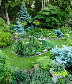 Garden Designs Ideas 2018 : An elevated view of the garden behind the house takes in blue spruce, weeping spruce, and pagoda dogwoods. Pagoda Dogwood, Backyard Pool Landscaping, Backyard Ideas, Pergola Ideas, Garden Ideas, Free Standing Pergola, Pergola Swing, Pergola Garden, Vintage Planters