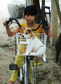 A little girl from Vietnam riding her bicycle with her adorable new best friend in tow.    :-)