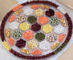 Beans and Lentils rangoli /centerpiece -- i like these colors! beans are cheap cheap cheap too...