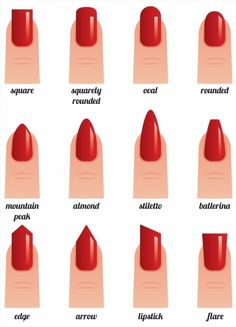 Stock vector illustration on a white background set of nails with nail polish pa.Stock vector illustration on a white background set of nails with nail polish painted red different forms poster - Acrylic Nail Shapes, Cute Acrylic Nails, Acrylic Nail Designs, Squoval Acrylic Nails, Acrylic Nails Almond Short, Nail Shapes Squoval, Rounded Acrylic Nails, Chrome Nails, Matte Nails