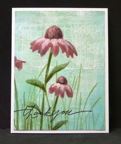 *WT431 Coneflower Thank You by hobbydujour - Cards and Paper Crafts at Splitcoaststampers