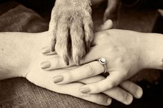 this is a cute engagement picture idea with your dogs.