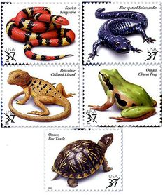 Cool critters that you might find in your backyard. Or in your stamp album.
