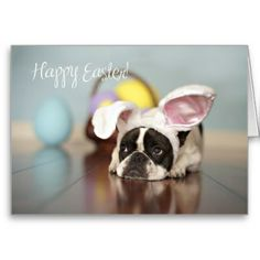 French Bulldog - Cute Easter Greeting Card - A cute French Bulldog in Easter bunny ears, with Easter basket and Easter eggs in the background, wishing you a Happy Easter!