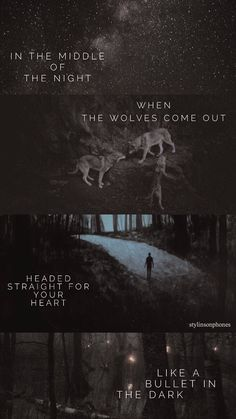 Wolves Lyrical Lockscreen — ctto: @stylinsonphones