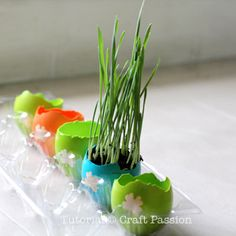 DIY your own colorful egg planter and grow your favorite herbs or mini plant. Me thinks I'll make those today