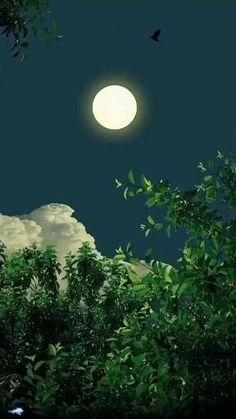 Beautiful Nature Scenes, Beautiful Moon, Amazing Nature, Beautiful Landscapes, Moon Poems, Hiroshima Peace Memorial, Night Sky Painting, Beauty Illustration, Film Aesthetic