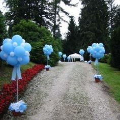 Decorate the drive way to your wedding reception or party with balloons. Gives the event an elegant flair! Balloon Topiary, Balloon Columns, Baby Shower Parties, Baby Boy Shower, Birthday Decorations, Baby Shower Decorations, Deco Ballon, Balloon Arrangements, Baby Baptism