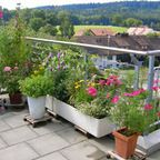Small Gardens - patio