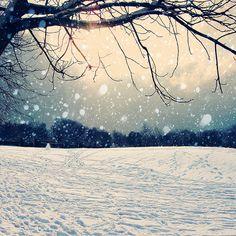 http://www.flickr.com/photos/thecheshiresmile/page1/ - у этой девушки куча атмосферных фото, чудесных фото цветов..