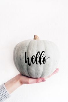 Hold a prop/object in your hand Hello October, Happy Fall Y'all, Fall Pictures, Painted Pumpkins, Photography Branding, Hello Autumn, Pumpkin Decorating, Fall Pumpkins, Autumn Inspiration