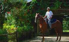 Beliza Eco Lodge Honeymoon (Blancaneaux Lodge)