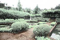 Infra Red Botanic Garden Singapore
