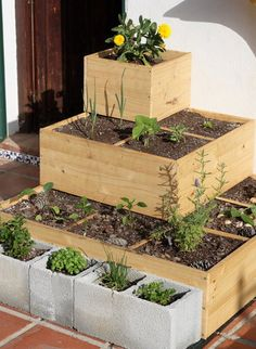 raised beds - perfect idea for my urban garden