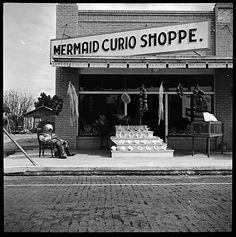 Walker EVANS :: Souvenir Shop, Florida, 1941