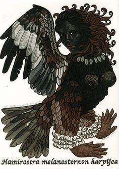 Jazmina Cininas. Black-breasted Buzzard. reduction linocut. 30x21 cm