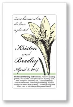 50 - Iris Wedding or Bridal Shower Seed Packet Favors - Spring Summer Flower