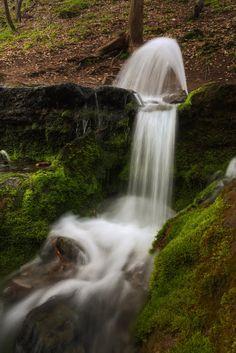 Red stone spring II. / Vöröskő-forrás II.  One of Hungary's periodically active springs at the Bükk National Park.