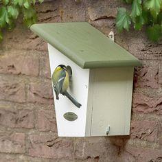 CJ Wildlife Lausanne Nest Box for Garden Birds - Was Now Common Garden Birds, Common Birds, Lausanne, Bird House Plans, Bird House Kits, Small Woodworking Projects, Wood Projects, Garden Decor Items, Bird Boxes