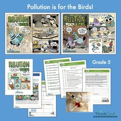 Our fifth grade unit, Pollution is for the Birds, focuses on causes, effects, and ways to reduce #pollution. Includes two full-color comics and a guide with discussion questions, hands-on activities, and student pages. Download all materials for free. #environmentaleducation #fifthgrade