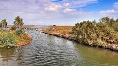 casoni fogolana valle millecampi laguna venezia Terra, River, Outdoor, Tourism, Outdoors, Outdoor Living, Garden, Rivers