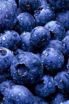 Dark berries, like these amazing-looking are packed with antioxidants & other nutrients. My favorite fruit. It's crazy how so many nature made objects have their own natural, perfect patterns. Photo Fruit, Fruit Picture, In Natura, Blue Aesthetic, Aesthetic Food, Canning Recipes, Cranberries, Fruits And Vegetables, Fresh Fruit