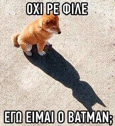 Funny Animal Memes, Stupid Funny Memes, Funny Animals, Greek Memes, Funny Greek Quotes, Jokes Images, Old Memes, Funny Phrases, Special Quotes