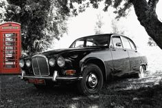 #old #jaguar