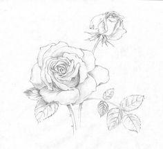 Image from http://s5.favim.com/610/51/Favim.com-drawing-illustration-rose-cute-fashion-466116.jpg.