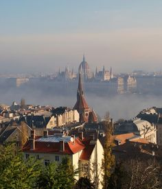 Foggy view of Parliament from Fisherman's Bastion, Budapest by MBWhite on Trekearth