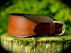 English Leather Handmade & Hand Stitched Lined Lurcher/Hound/Whippet/Greyhound Collar