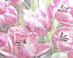 Frühlingserwachen im deinen Wohnräumen - Tapete mit floralem Tulpendruck im modernen Stil. #Tapete #Wohnen #Wandtapete #renovieren #Fruehling #Malerei #Wandbild #spring #springtime #fruehlingsboten #fruehlingsblumen